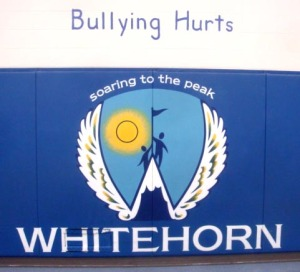 Stop Bullying in Peel Schools