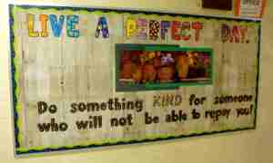 A Perfect Days has no bullying