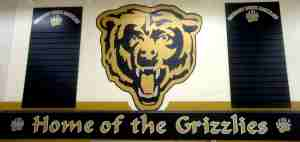The Grizzlies Den at Gregory Drive School